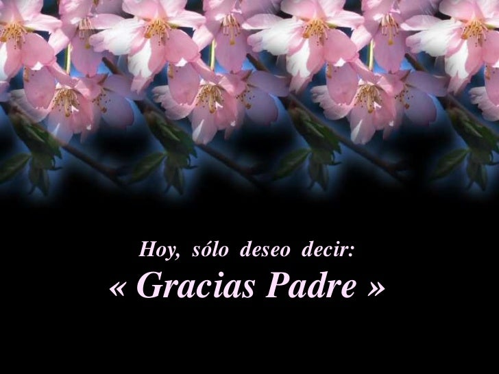Hoy,  sólo  deseo  decir:<br />«Gracias Padre»<br />
