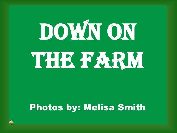 DOWN ON THE FARMPhotos by: Melisa Smith<br />