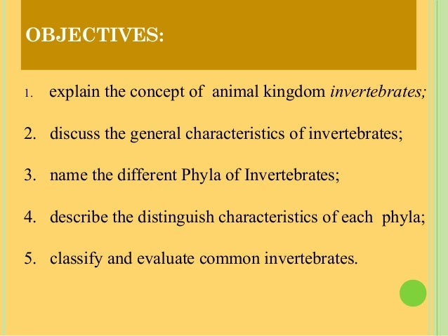 Objectives 1 Explain The Concept Of Animal Kingdom Inverte Tes 2 Discuss The