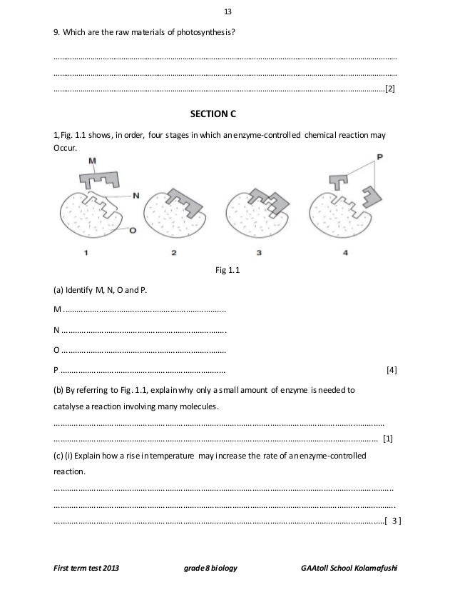 biology first exam 1 biology 105 lab practical exam 1 – review sheet the first lab exam will cover the following labs: microscope, metric/measurements (including the metric homework.