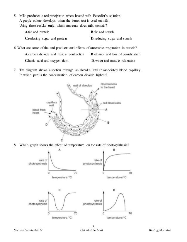 the concentration of reducing sugars biology essay Investigate amylase action by adding search practical biology topics cells to check your amylase supply as many contain starch or reducing sugars.