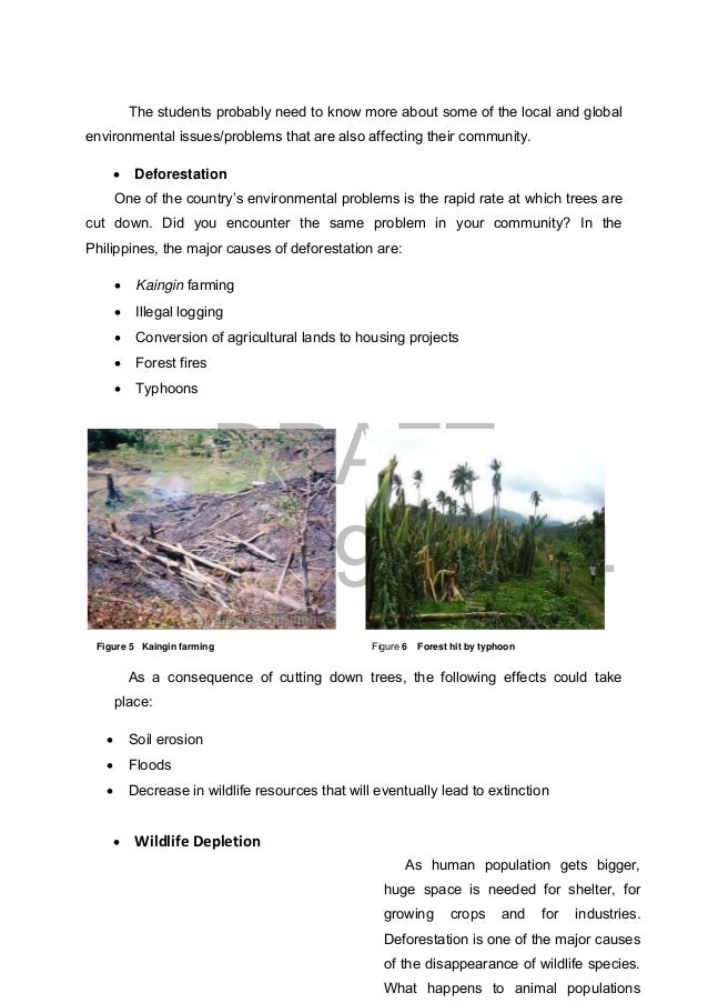 causes of kaingin farming Kaingin system of farming this is the process where kaingineros burn first the forest to produce charcoals and because of this, great tracts of land in the forest have been destroyed by kaingin method of forest farming.