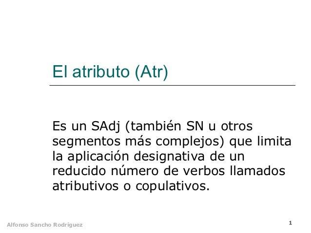 El atributo (Atr)              Es un SAdj (también SN u otros              segmentos más complejos) que limita            ...