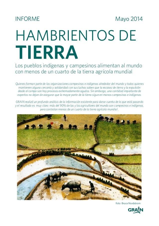 INFORME Mayo 2014 HAMBRIENTOS DE TIERRALos pueblos indígenas y campesinos alimentan al mundo con menos de un cuarto de la ...