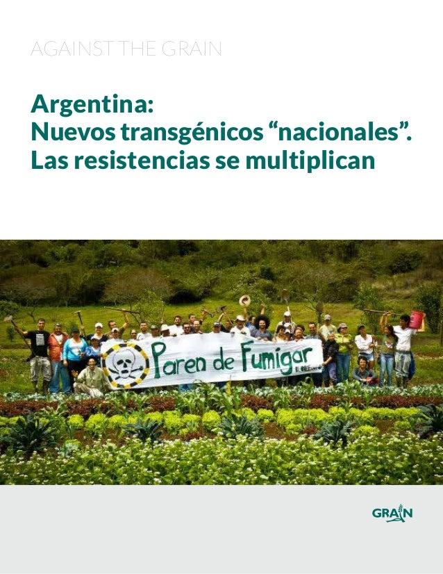 """Against the Grain Argentina: Nuevostransgénicos """"nacionales"""". Las resistencias se multiplican"""