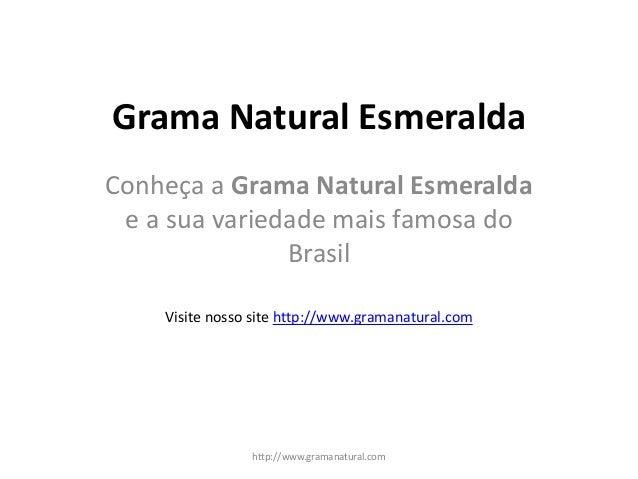 Grama Natural Esmeralda Conheça a Grama Natural Esmeralda e a sua variedade mais famosa do Brasil http://www.gramanatural....