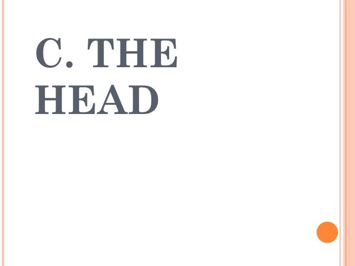 C. THE HEAD
