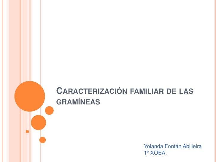 CARACTERIZACIÓN FAMILIAR DE LASGRAMÍNEAS                   Yolanda Fontán Abilleira                   1º XOEA.