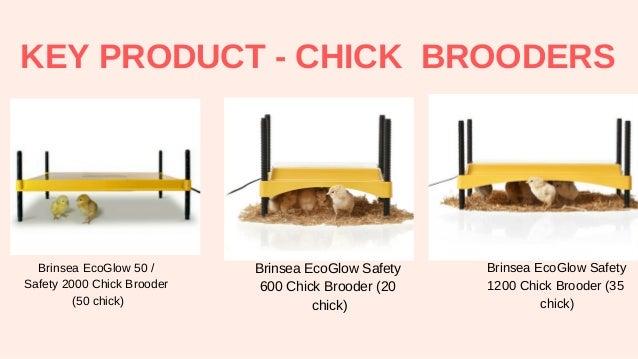 Brinsea EcoGlow Safety 2000