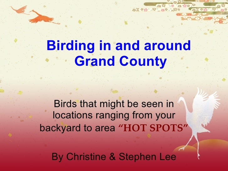 "Birding in and around  Grand County Birds that might be seen in locations ranging from your backyard to area  ""HOT SPOTS"" ..."