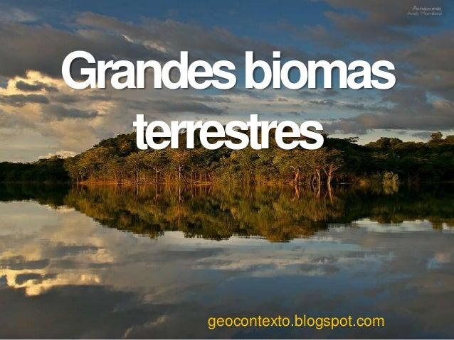 Grandesbiomas terrestres geocontexto.blogspot.com