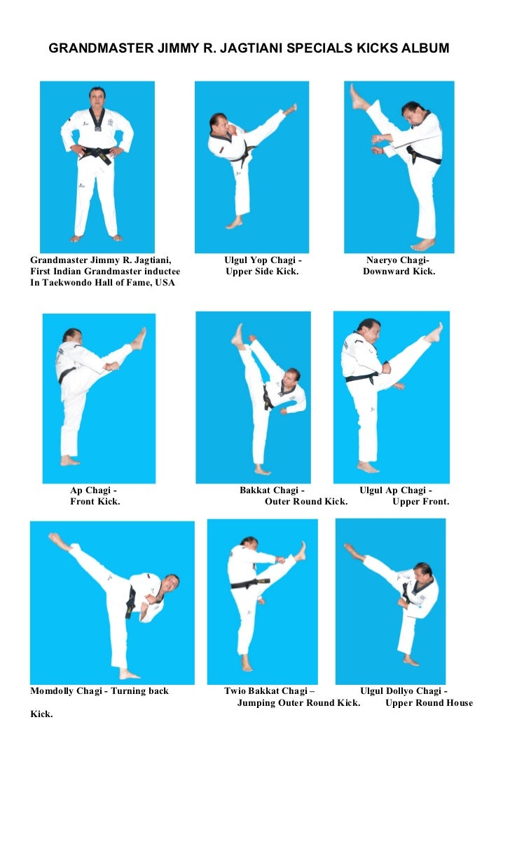 Taekwondo Kicks Names In Korean Pdf | www.imgkid.com - The ...