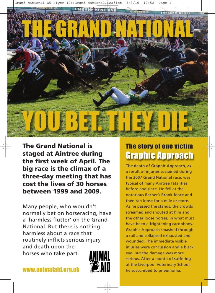 THE GRAND NATIONAL    YOU BET. THEY DIE.                                     The story of one victim                      ...