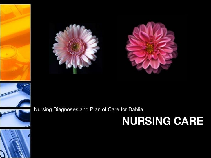 concept of nursing rounds Intraprofessional nursing communication and collaboration: apn-rn-patient included in physician led patient rounds this exclusion is unfortunate because, during rounds, nurses could provide essential nursing expertise and knowledge about patients.