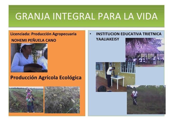 <ul><li>Licenciada: Producción Agropecuaria </li></ul><ul><li>NOHEMI PEÑUELA CANO </li></ul><ul><li>Producción Agrícola Ec...