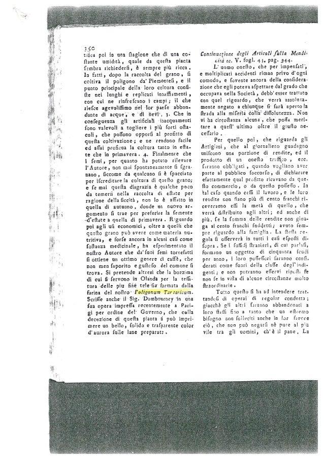 Grano Saraceno Fagopyrum Tataricum -  Liguria