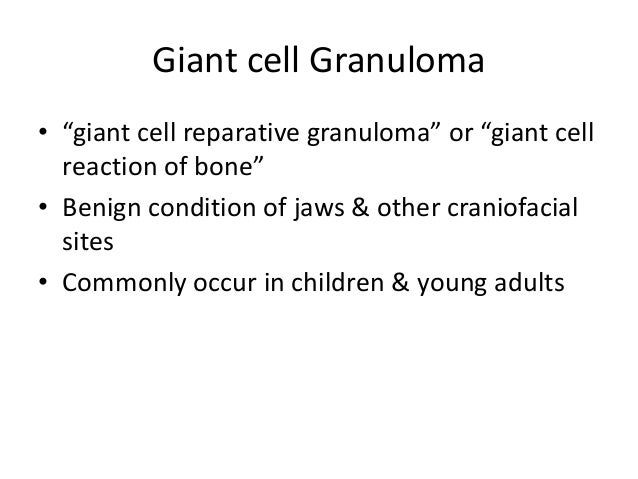 """Giant cell Granuloma • """"giant cell reparative granuloma"""" or """"giant cell reaction of bone"""" • Benign condition of jaws & oth..."""