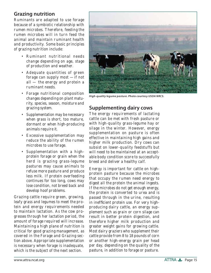 Dairy production on pasture : an introduction to grass based and seasonal dairying
