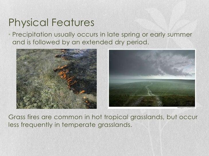 Characteristics of the Grassland
