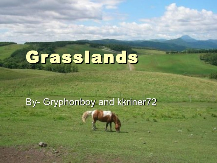 Grasslands By- Gryphonboy and kkriner72