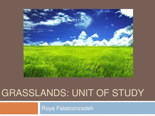 a study of grasslands This book profiles 13 contributions by some of the world's best scientists on the subjects of measuring soil c in grassland systems and sustainable grassland.