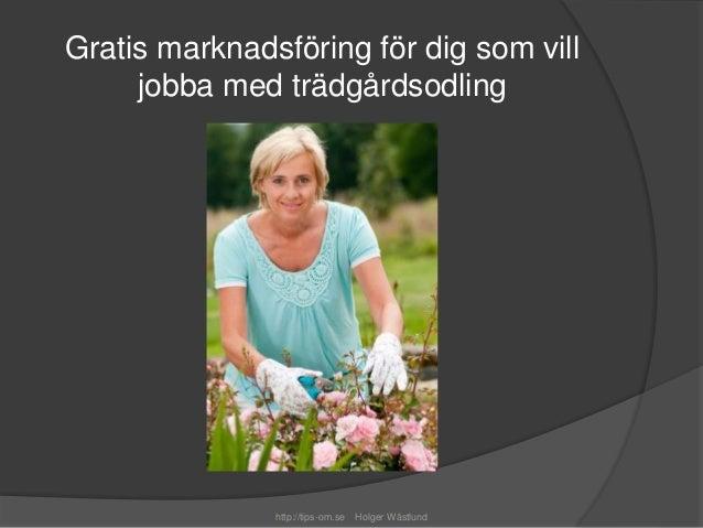 Gratis marknadsföring för dig som vill  jobba med trädgårdsodling  http://tips-om.se Holger Wästlund