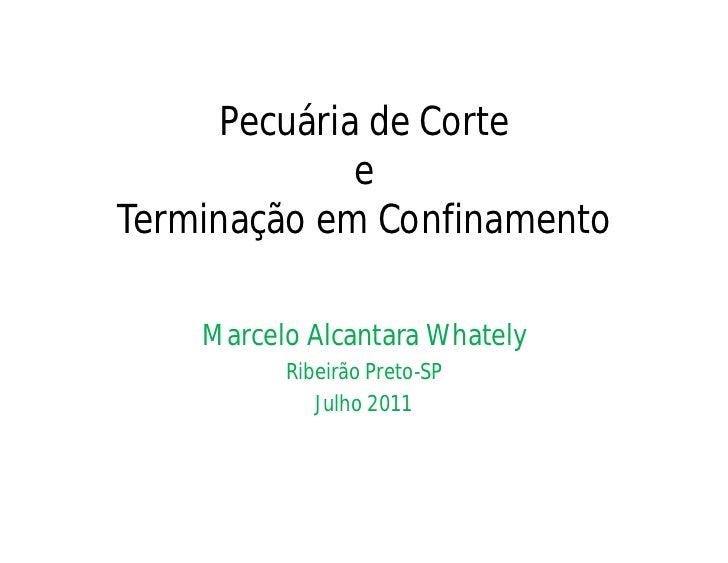 Pecuária de Corte             eTerminação em Confinamento    Marcelo Alcantara Whately          Ribeirão Preto-SP         ...