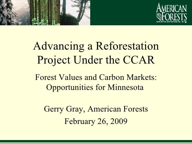 Forest Values and Carbon Markets: Opportunities for Minnesota  Gerry Gray, American Forests February 26, 2009 Advancing a ...