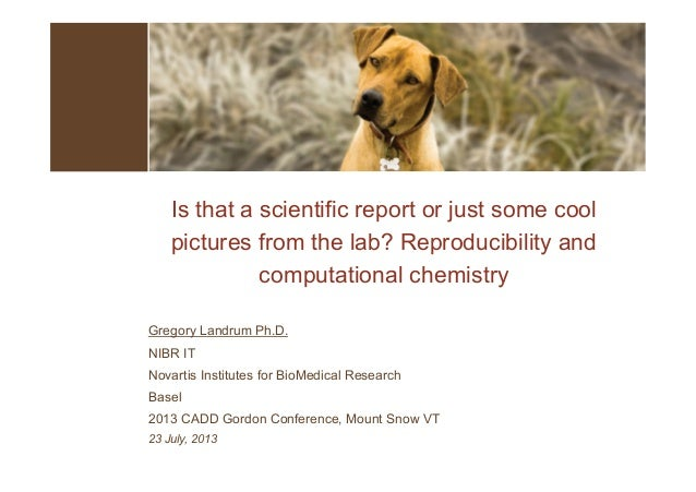 Is that a scientific report or just some cool pictures from the lab? Reproducibility and computational chemistry Gregory L...