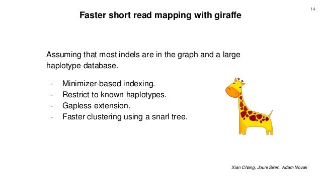 Faster short read mapping with giraffe Xian Chang, Jouni Siren, Adam Novak Assuming that most indels are in the graph and ...