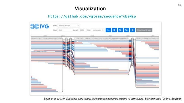 https://github.com/vgteam/sequenceTubeMap Visualization Beyer et al. (2019). Sequence tube maps: making graph genomes intu...
