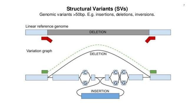 Structural Variants (SVs) Genomic variants >50bp. E.g. insertions, deletions, inversions. 7
