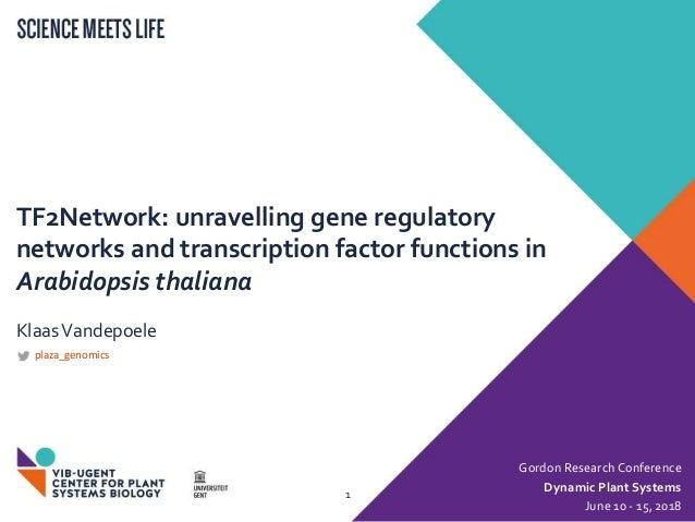 TF2Network: unravelling gene regulatory networks and transcription factor functions in Arabidopsis thaliana KlaasVandepoel...
