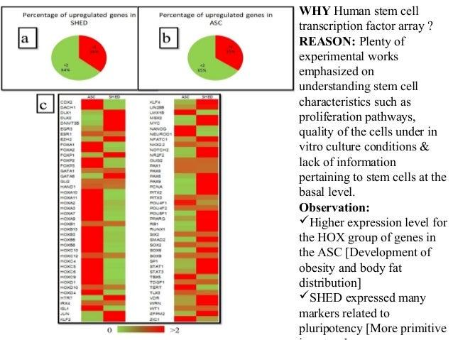 WHY Human stem cell transcription factor array ? REASON: Plenty of experimental works emphasized on understanding stem cel...