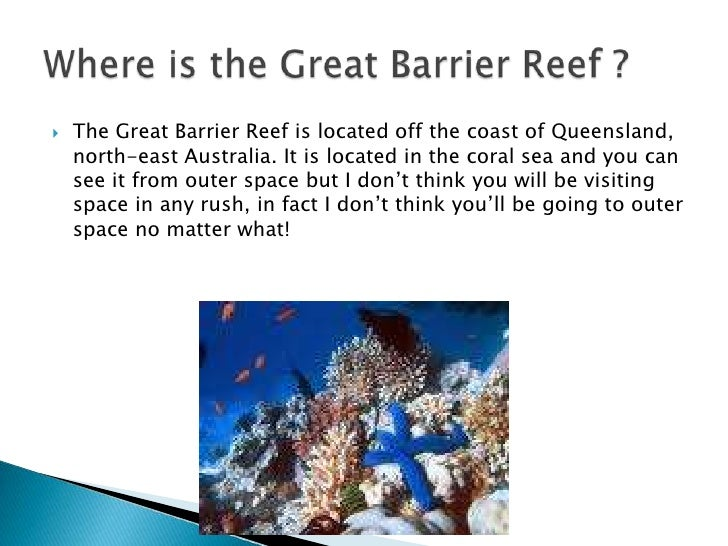 an in depth look at coral reefs and how they are formed 20 although coral reefs require nutrient-poor water, they are 29 _____ corals look like fingers or clumps of cigars and 41 bottom topography, depth, wave and current strength, light, temperature.