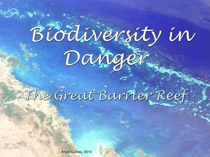 Biodiversity in Danger<br />The GreatBarrierReef<br />Angel Carney, 2010<br />