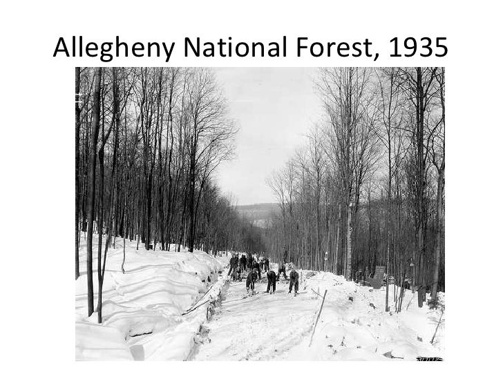 Allegheny National Forest, 1935<br />