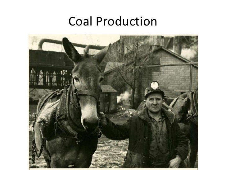 Coal Production<br />