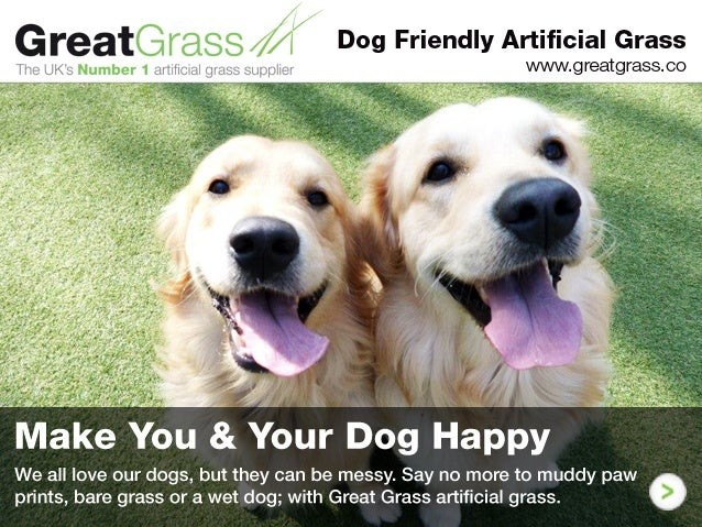 Find Out How Great Grass Creating Thousands of Happy Pets & Pet Owners