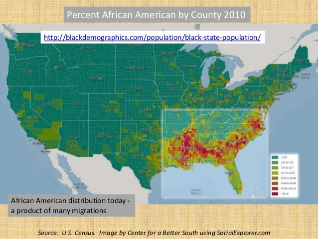 8 african american distribution