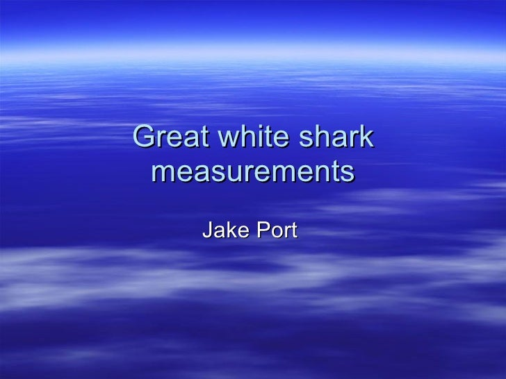 Great white shark measurements Jake Port