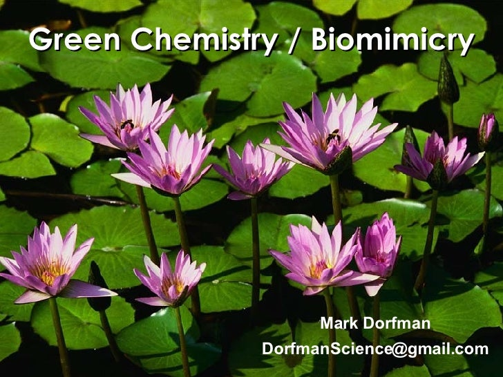 Green Chemistry / Biomimicry [email_address] Mark Dorfman