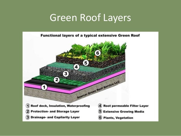 Green Roof System Construction