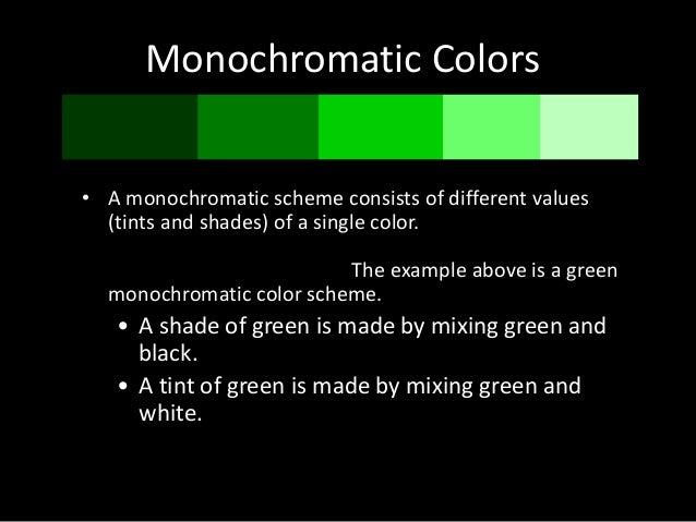 Color Scheme 15 Monochromatic