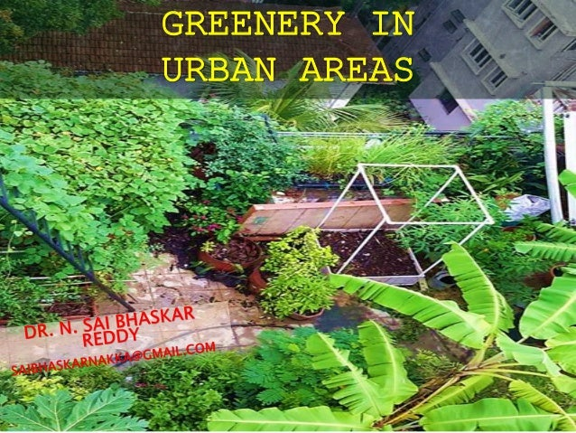 GREENERY IN URBAN AREAS