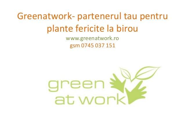 Greenatwork- partenerul tau pentru      plante fericite la birou           www.greenatwork.ro            gsm 0745 037 151