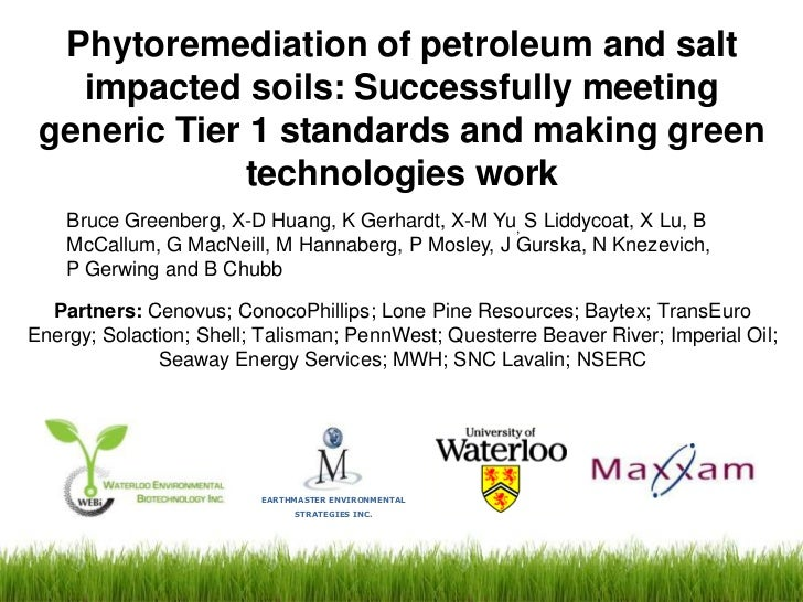 Phytoremediation of petroleum and salt   impacted soils: Successfully meeting generic Tier 1 standards and making green   ...