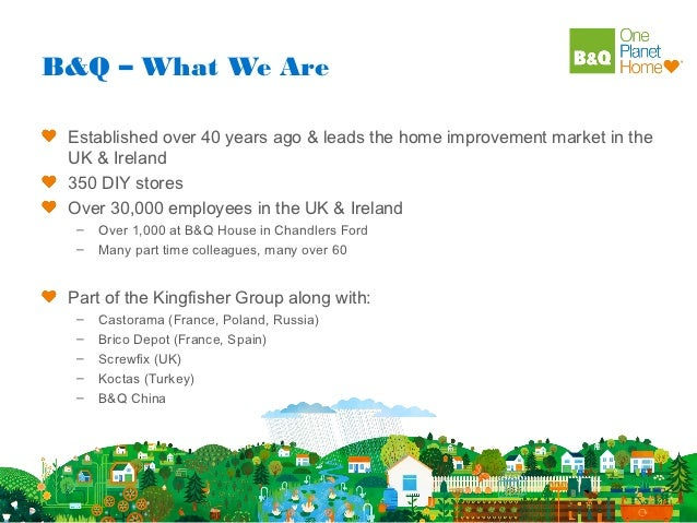 B&Q – What We Are Established over 40 years ago & leads the home improvement market in the UK & Ireland 350 DIY stores Ove...