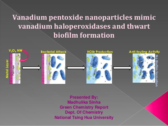 Vanadium pentoxide nanoparticles mimicvanadium haloperoxidases and thwartbiofilm formationV2O5 NWMetalLayerBacterial Attac...