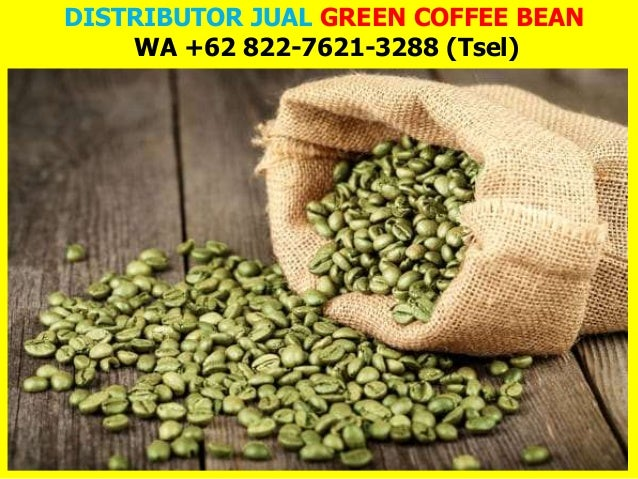 DISTRIBUTOR JUAL GREEN COFFEE BEAN WA +62 822-7621-3288 (Tsel)